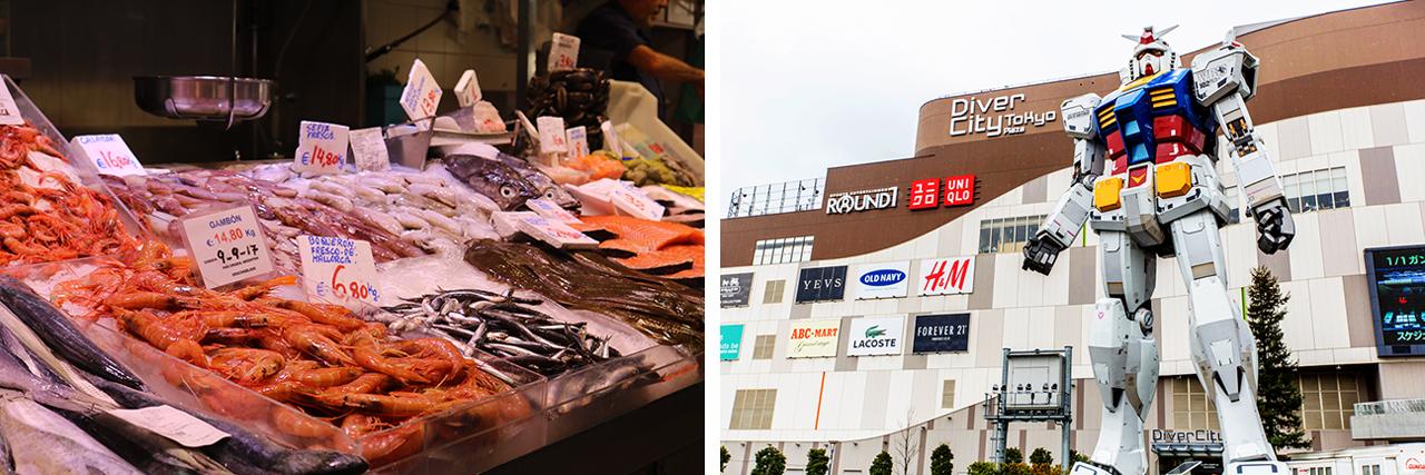 Tsukiji Fish Market - Odaiba