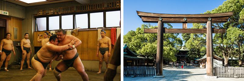 Sumo Practice Watch - Meiji Shrine